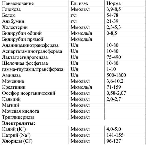 Анализ крови у собак: норма, расшифровка, причины повышения и снижения показателей