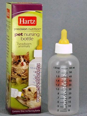 Как кормить новорожденного котенка без кошки в домашних условиях?