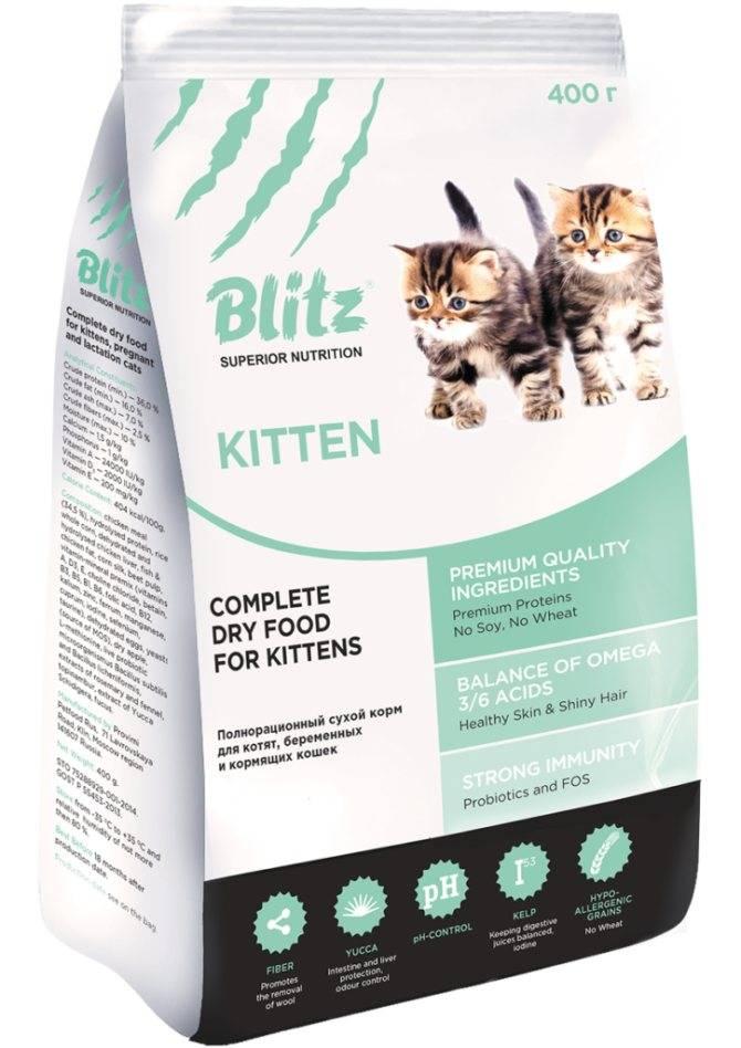 Какой корм для кормящих кошек лучше