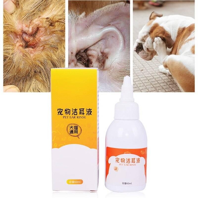 Как почистить коту уши (в домашних условиях)