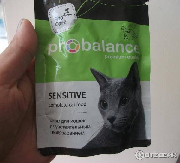 Корма для кошек: виды, классы, отзывы ветеринаров | сайт «мурло»