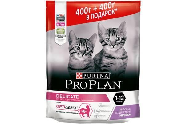 Корм для кошек с чувствительным пищеварением: какой лучше?