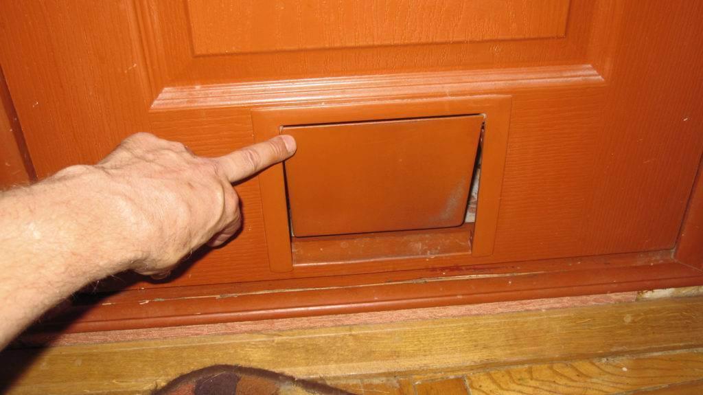 Дверца для кошек в дверь: отверстие-лаз для домашних животных