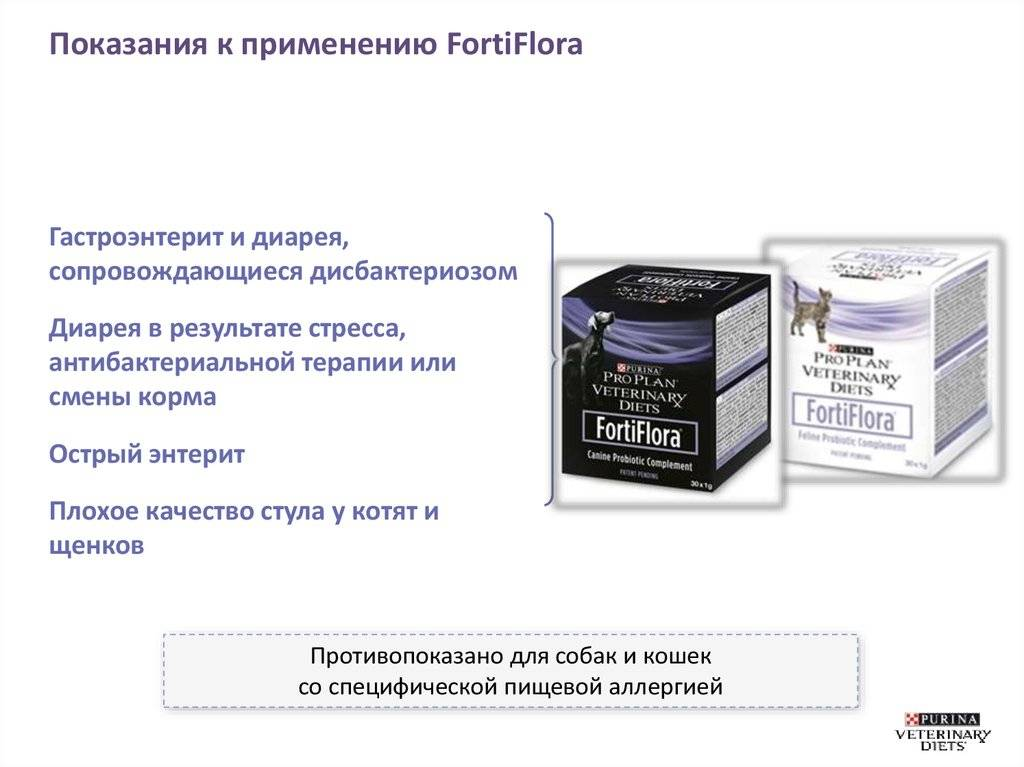 Фортифлора против дисбактериоза