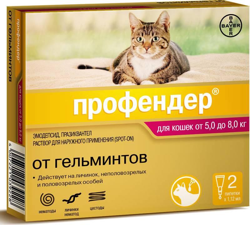 Профендер для кошек: инструкция по применению, цена, отзывы