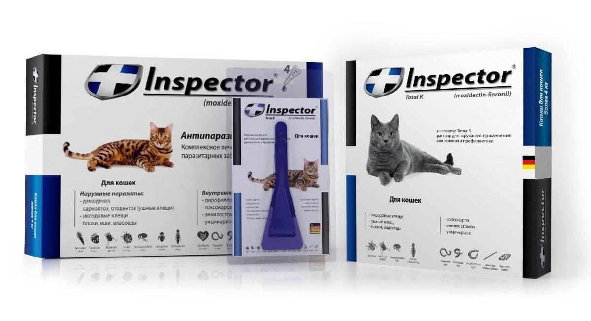 Инспектор - капли для кошек: инструкция по применению, аналоги, состав