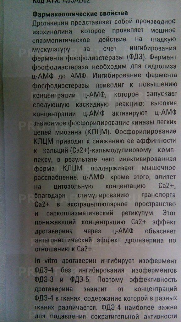 Сколько ношпы можно дать коту при цистите - советврача24/7
