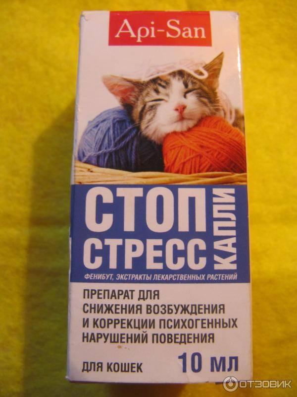 Стоп-стресс для кошек — капли и таблетки