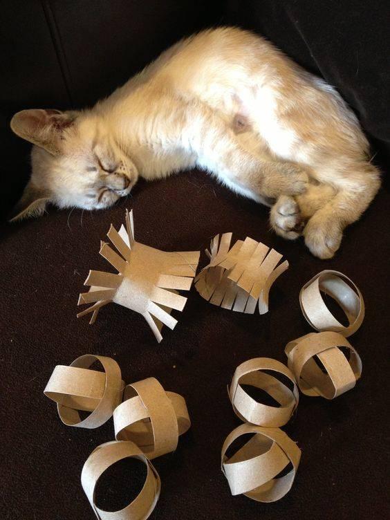 Как сделать кошку - поэтапная инструкция создания поделок в виде кота