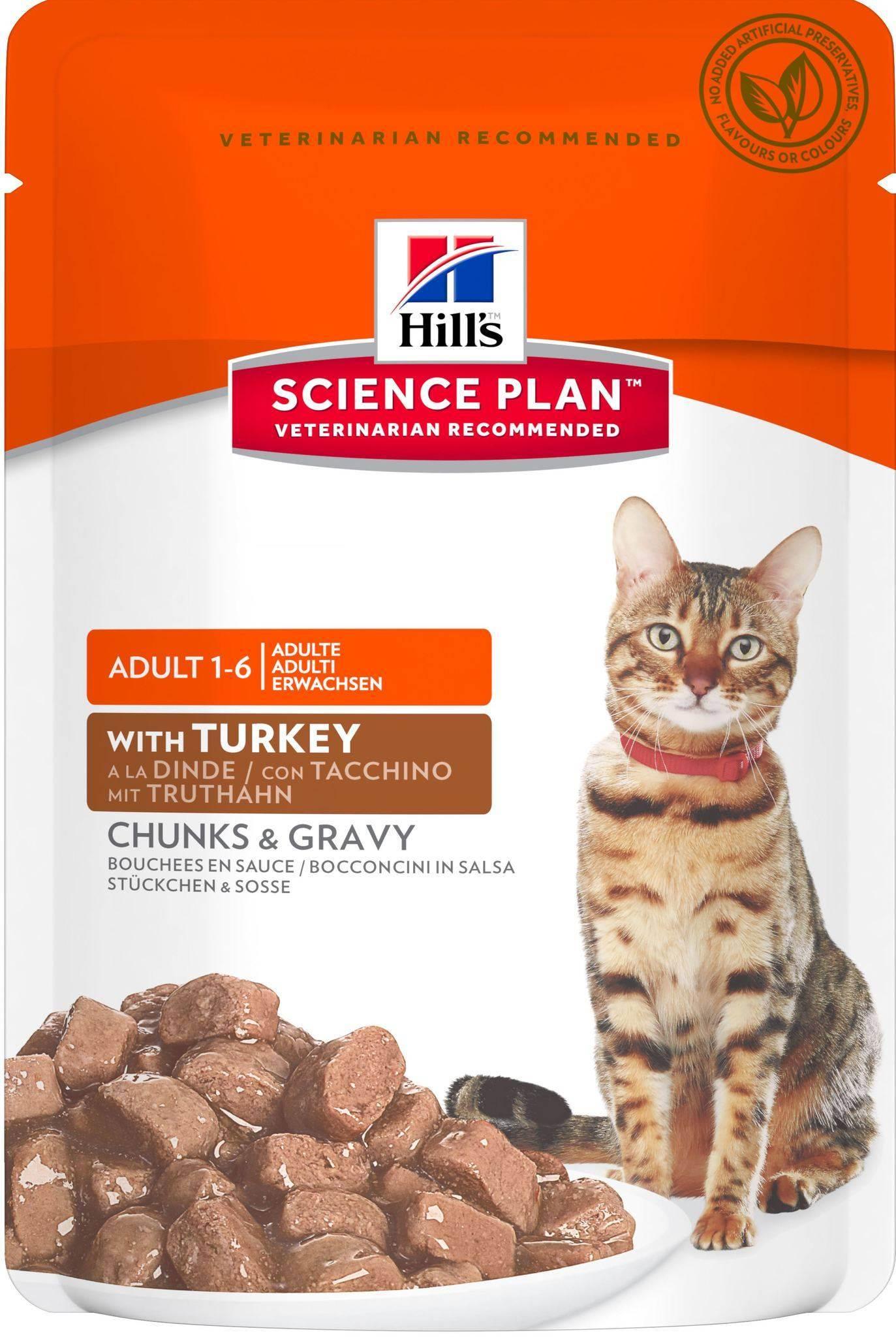 Корм хиллс для кошек: отзывы и обзор состава