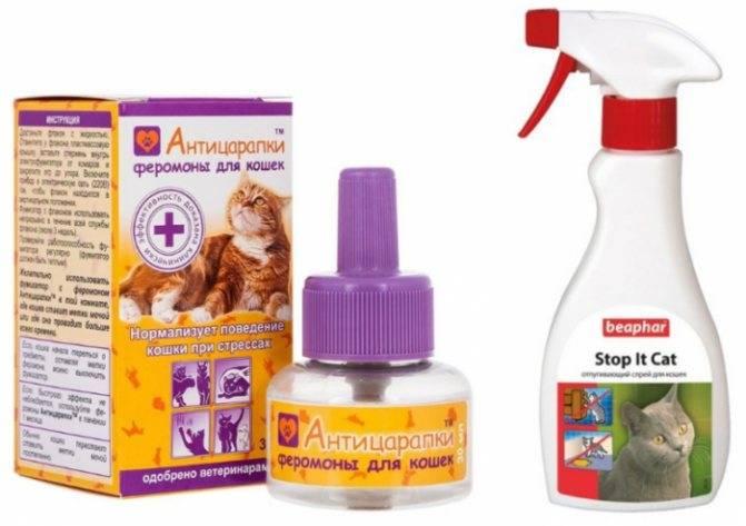 Антицарапки для кошек и котов