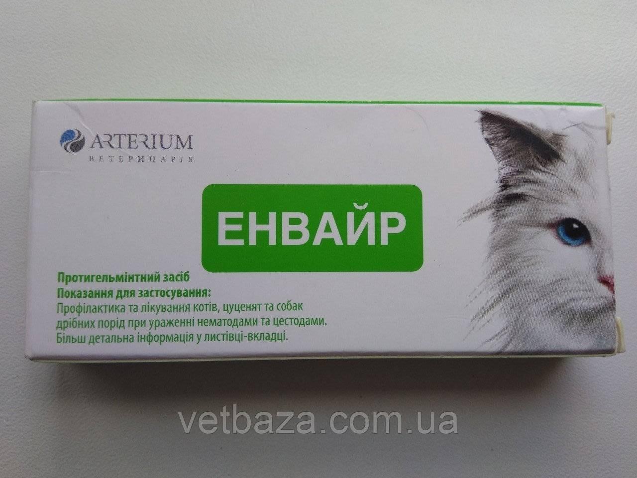 Феливей для кошек: как действует, инструкция по применению, показания, отзывы
