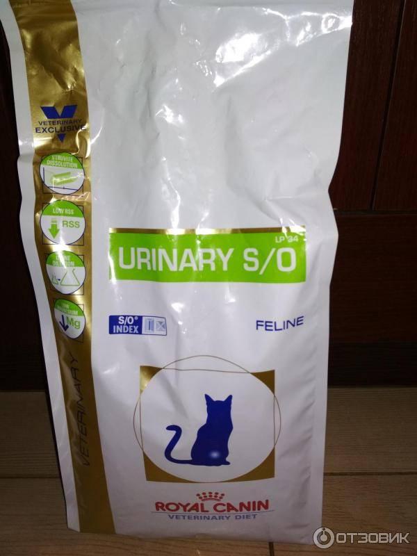Лечебные корма для кошек при мочекаменной болезни | чем кормить при мкб