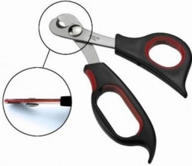 Как обрезать когти собаке в домашних условиях с помощью кусачек, когтереза, гильотины