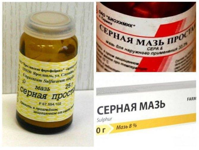 Лечение стригущего лишая мазями: проверенные препараты против грибка