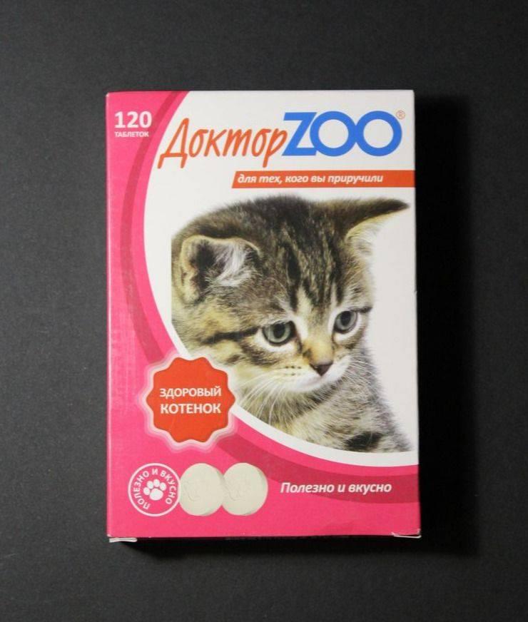 Какие витамины нужны для поддержания кошачьего иммунитета