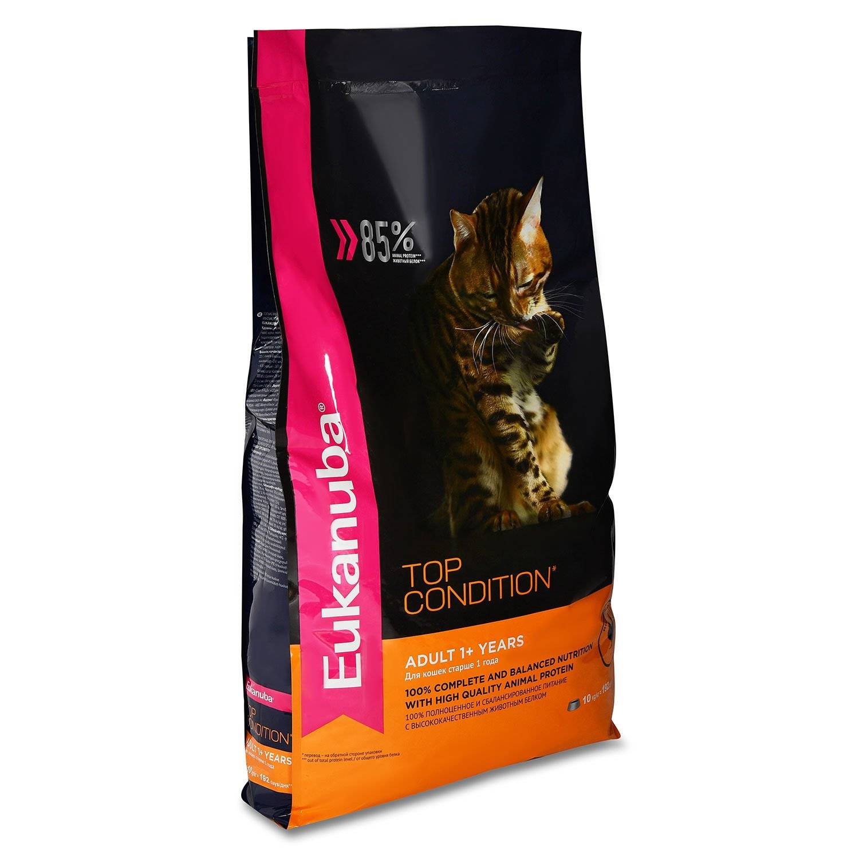 Корм для кошек eukanuba: отзывы и разбор состава - петобзор