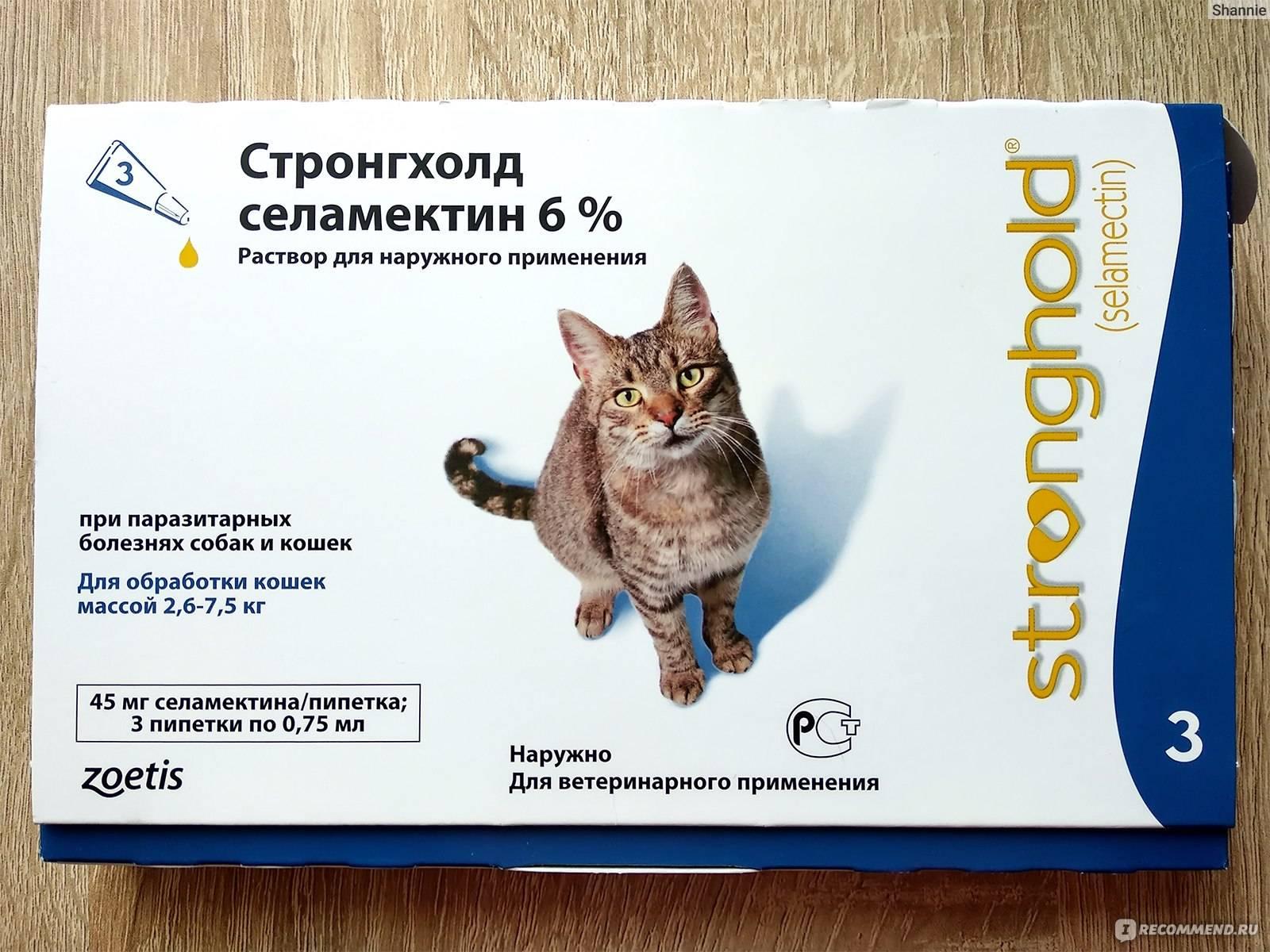 Стронгхолд для кошек – обзор препарата