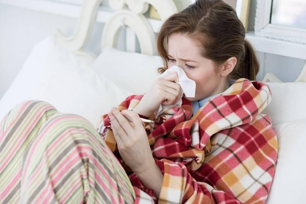 Могут ли коты заразиться от человека простудой заразен ли человек