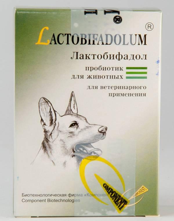 Инструкция по применению суспензии и таблеток «празител» для лечения кошек и котят от глистов, состав и дозировка