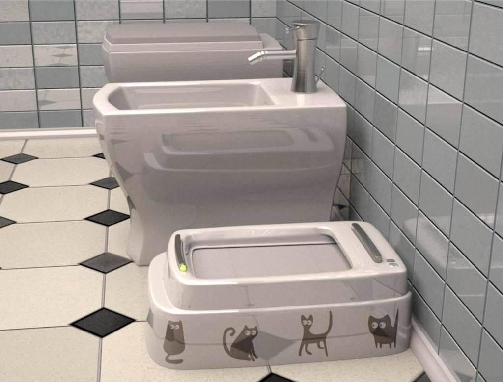 Кошачий туалет своими руками (50 фото): как выбрать лоток, спрятанный крытый горшок, какие виды, как убирать