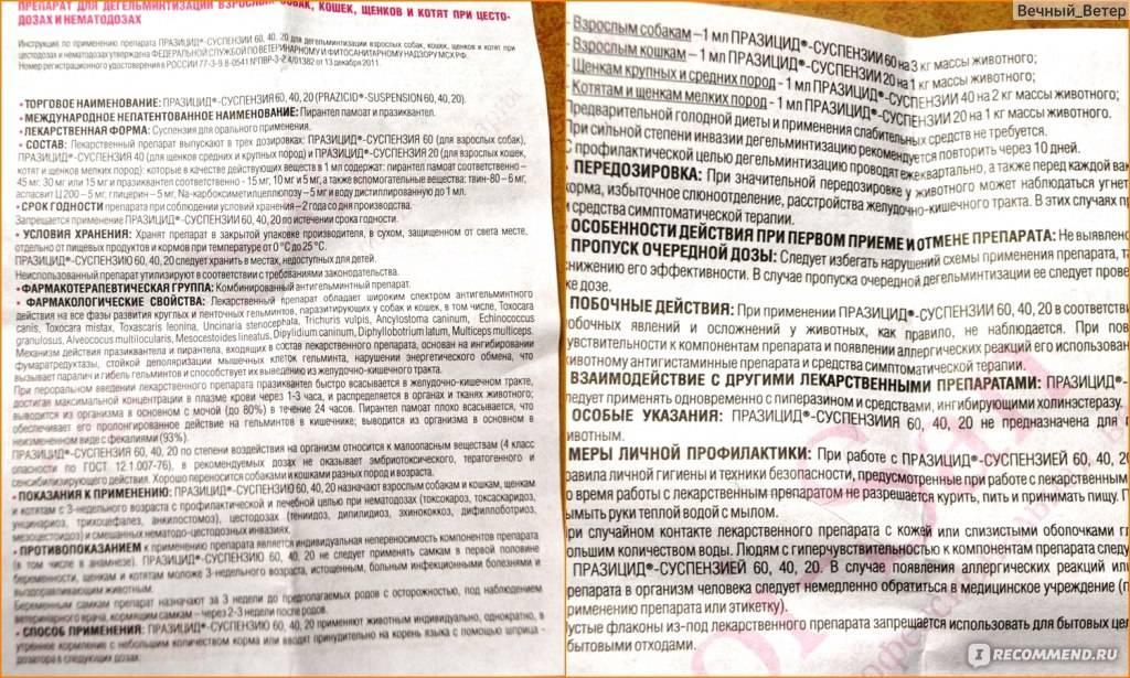 Празицид суспензия для собак: инструкция и показания к применению, отзывы, цена