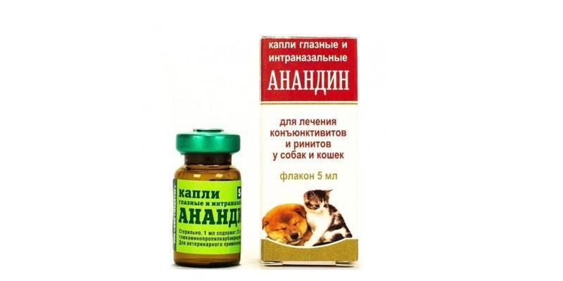 Анандин для кошек: инструкция по применению и отзывы, капли в нос, мази, ушные и глазные капли
