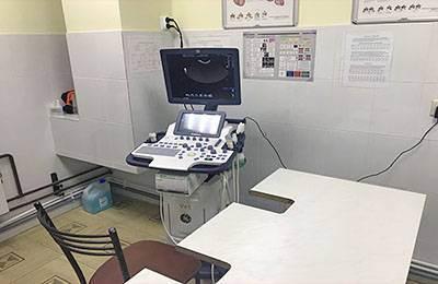 Ветеринарная клиника толстый лори