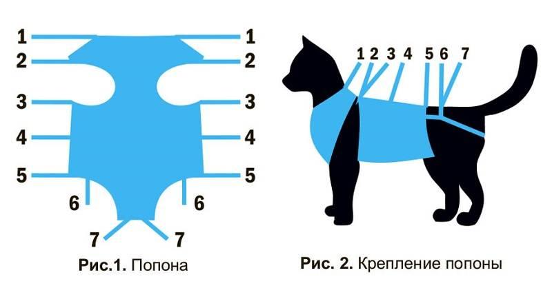 Бандажи или попоны для кошек после стерилизации, готовые или сшитые своими руками