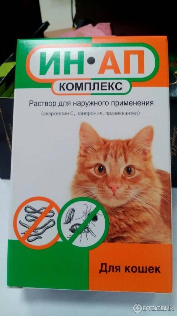 """""""ин-ап"""", комплекс для кошек: инструкция, отзывы"""