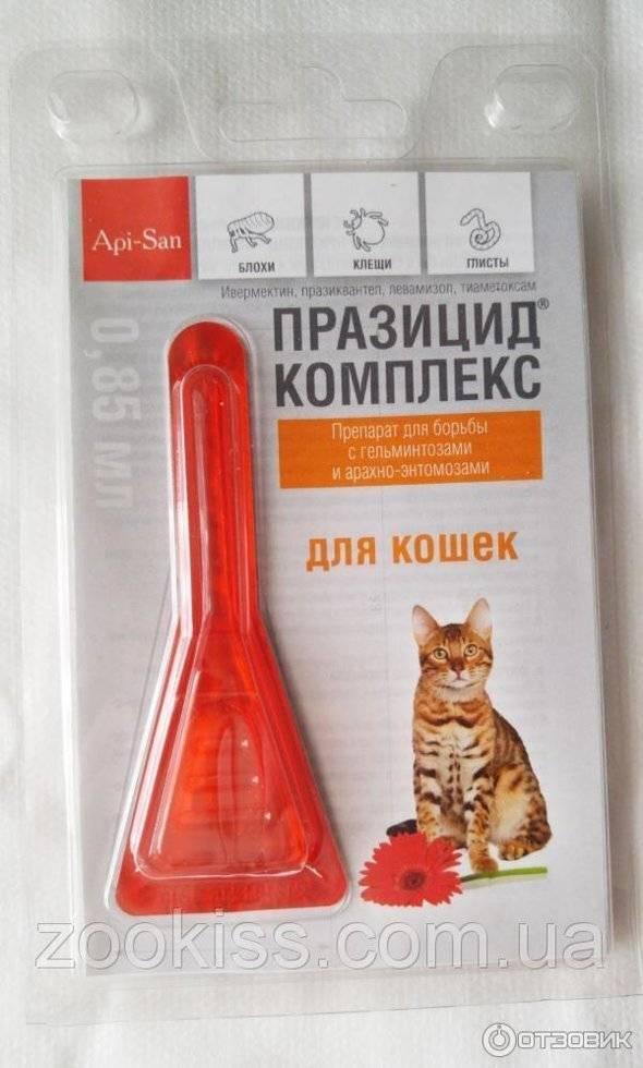 Празицид комплекс (суспензии и таблетки): инструкция по применению для взрослых кошек и котят