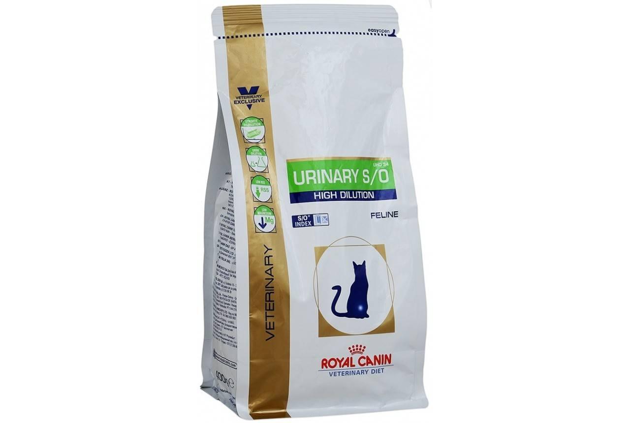 Чем кормить кошку при мочекаменной болезни - муркин дом