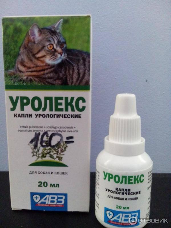 Уролекс для кошек и собак инструкция по применению лекарства  уролекс в ветеринарии состав дозировка отзывы