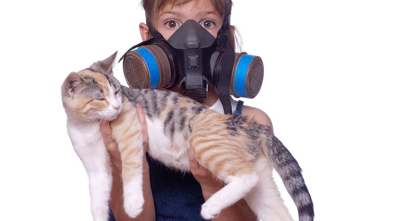 Кажется что пахнет кошачьей мочой. методы решения проблемы. провоцирующие факторы: следствием чего является неприятный запах.