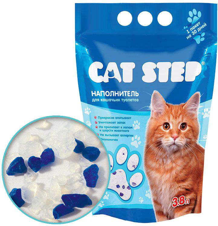Почему котёнок ест наполнитель для туалета?