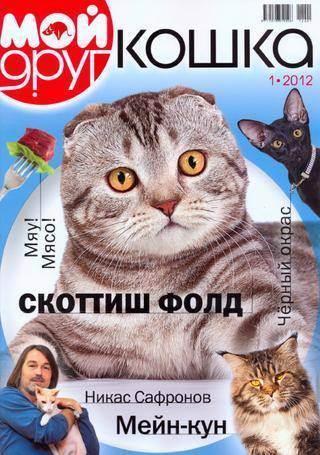 Вопрос к заводчикам кошек. - запись пользователя юлия (id1428377) в сообществе домашние животные в категории помогите советом - babyblog.ru
