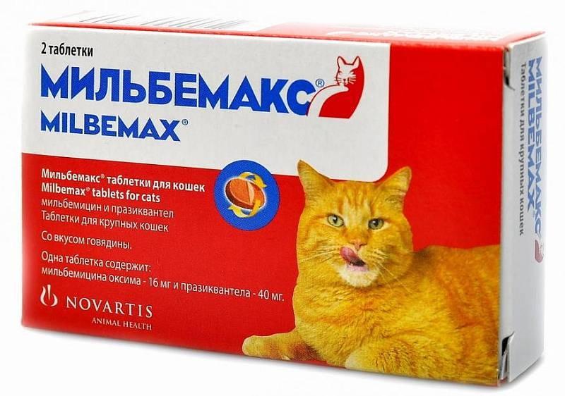 Мильбемакс для кошек - дозировка, противопоказания, цены