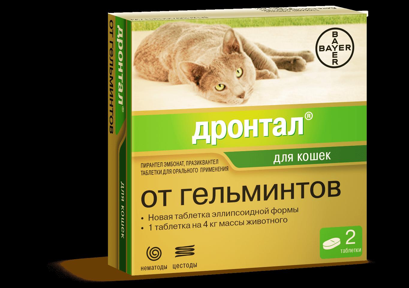 Как правильно дать коту таблетку от глистов
