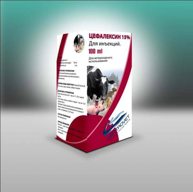 Как давать цефалексин суспензию собаке до 10 кг