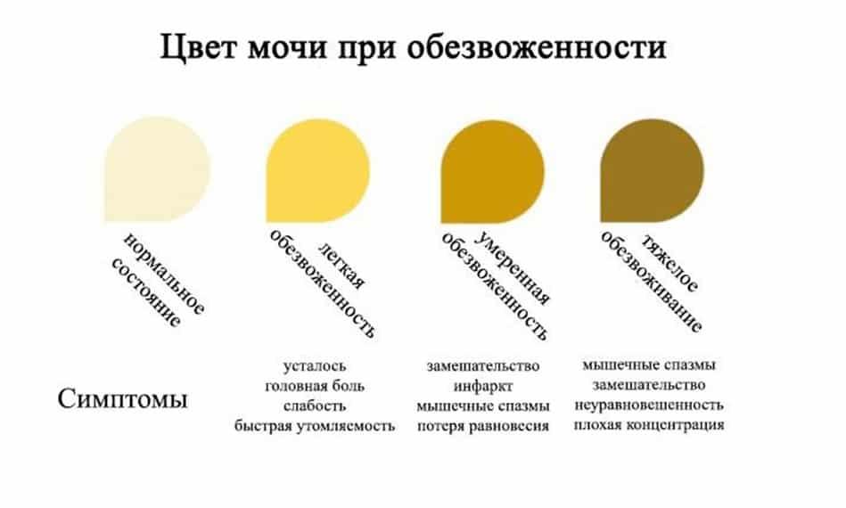 Почему моча оранжевая: возможные причины и их лечение