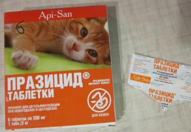 Празицид для кошек — инструкция по применению