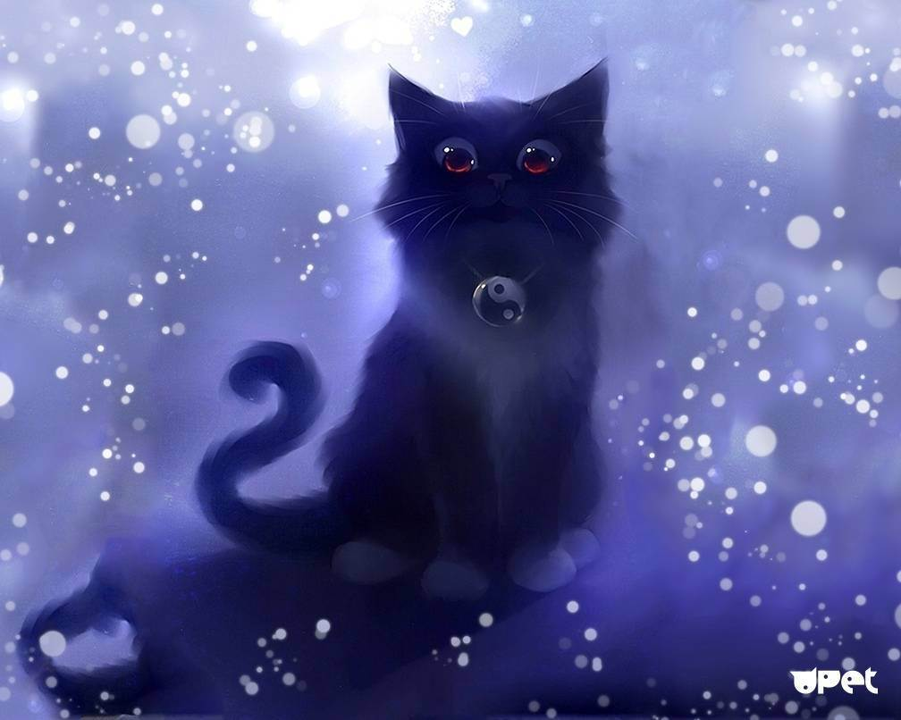 Зачем кошке нужен таурин?