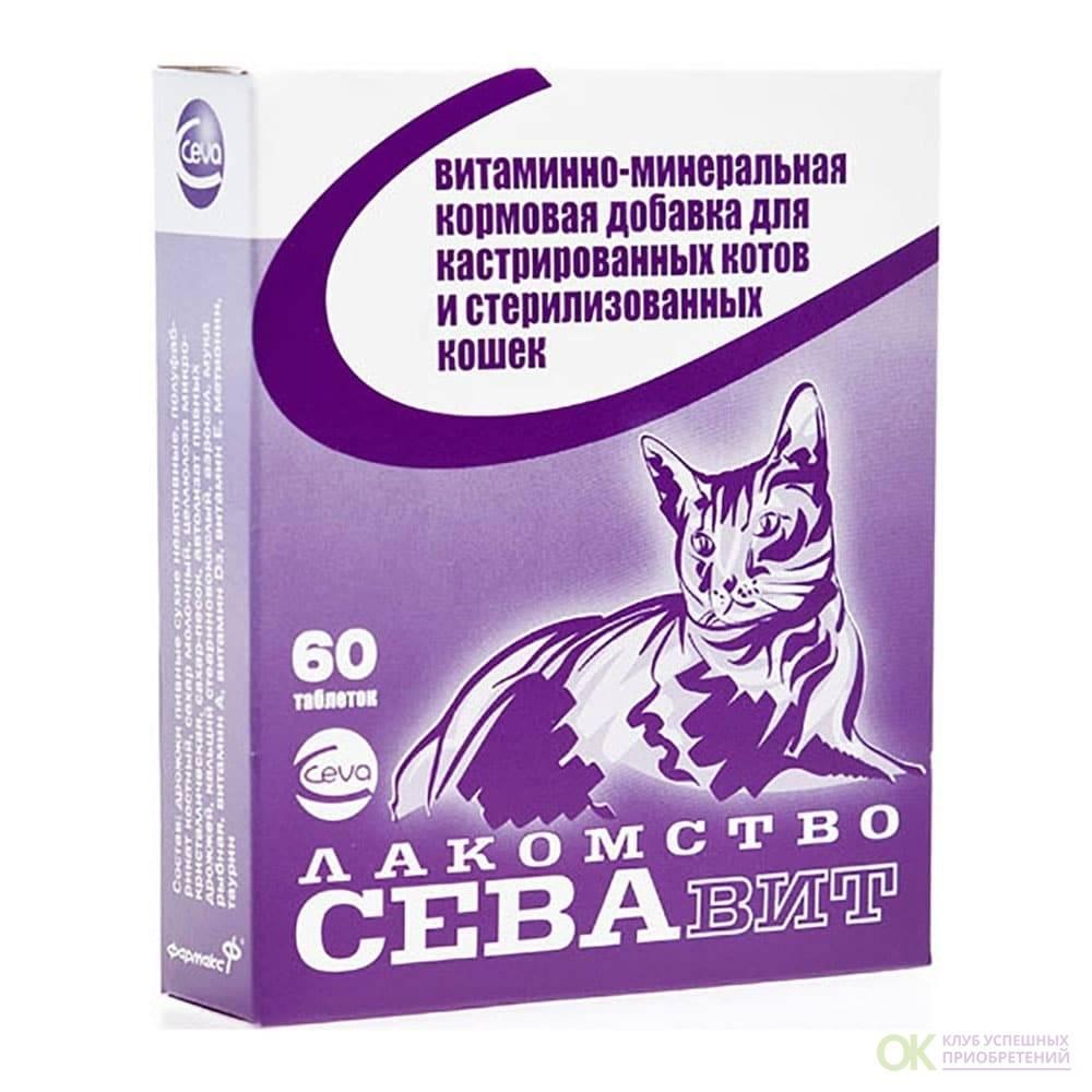 Чем кормить кастрированного кота. советы и рекомендации