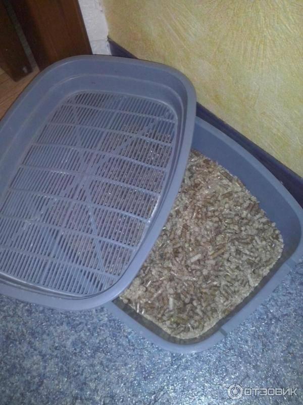 Лоток для кошачьего туалета как использовать
