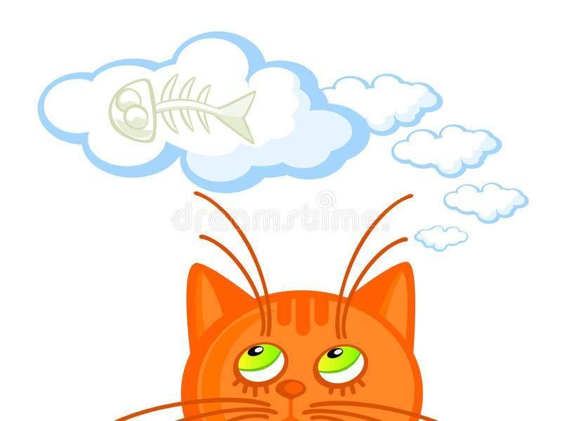 Увидеть сне свою кошку