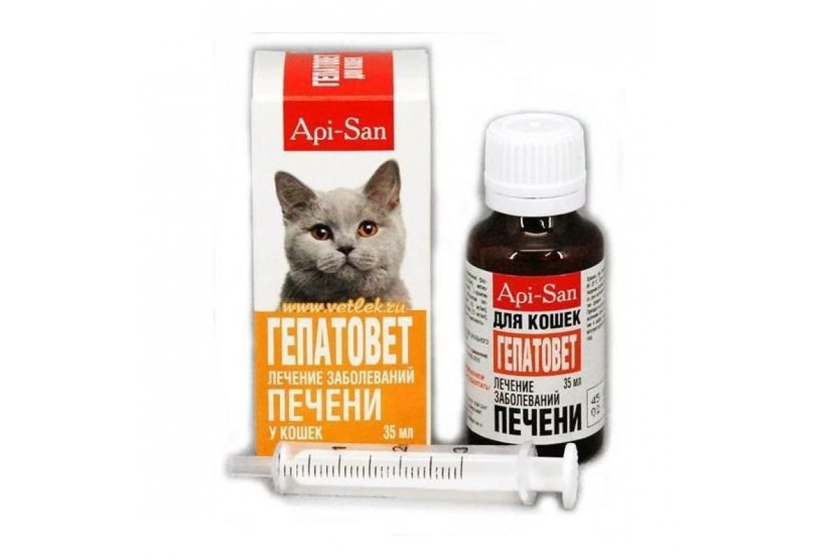 Заболевание печени симптомы у котов