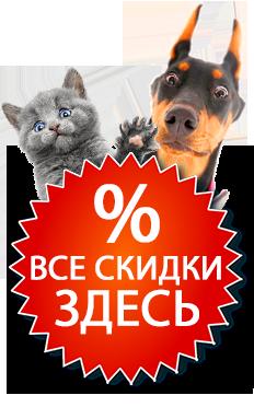Корм для собак acana regionals pacifica dog grain-free