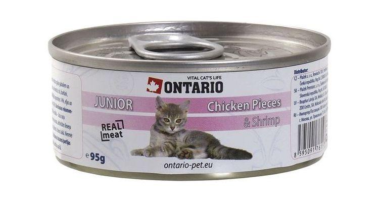 Подробный обзор кормов для кошки и котенка от монж: из чего он состоит