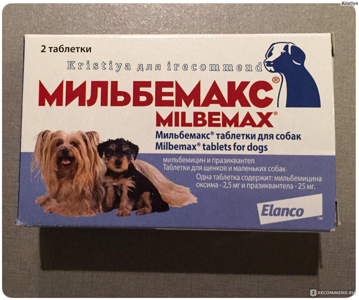 Мильбемакс для кошек: помощник в борьбе с паразитами