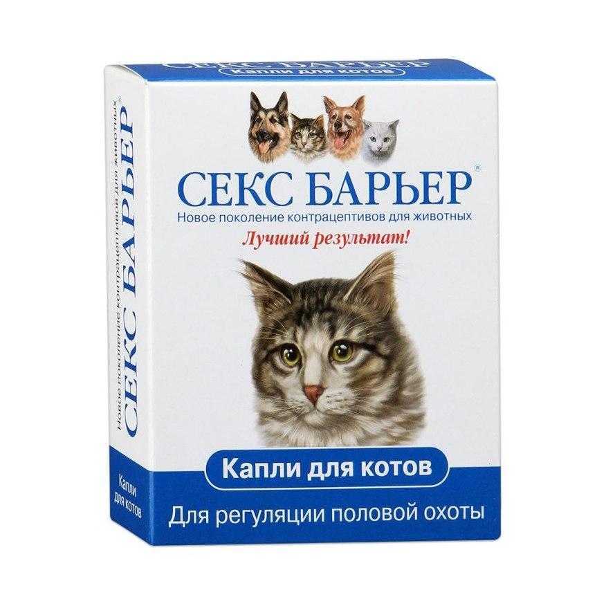 Описание противозачаточных таблеток и контрацептивов для кошки и кота